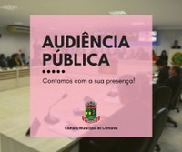 Câmara de Linhares promove audiência pública on-line sobre a LDO 2021